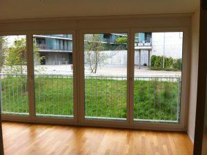 Fensterreinigung Fensterfront